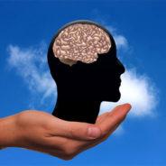 Transformation agile : notre cerveau aussi est agile!